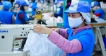 Ample room for growth in Vietnamese exports to France