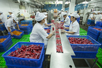 Processing industry leads Q1 export growth