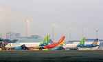 Supportfor domestic carriers should be fair: experts
