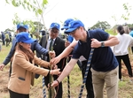 Novaland to help plant 50 million trees in Central Highlands province