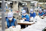 Competitive capacity key to gaining benefits from CPTPP and FTAs: experts