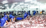 Seafood exports to go up by 10% in Q2