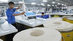 India removes anti-dumping duties for Vietnamese fibres