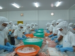 Viet Nam's tra fish exports expected to continue recovering