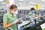 Viet Nam expects to see export growth in rising global demand
