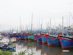 Binh Dinh proposes withdrawing two local ports from planning