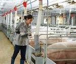 IFC helpsGreenFeed Vietnam expand