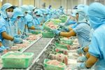Viet Nam's agriculture sector gains export growth in H1