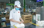 An Phat Holdings accelerates progress of Southeast Asia's largest green material manufacturing plant