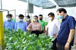 Firms promote consumption of farming products amid COVID-19 pandemic