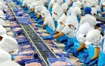 Food processing sector takes tech route to recovery