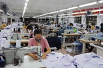 Programme to help SMEs enter foreign markets kicks-off