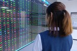 VN-Index extends losses on large-cap stocks