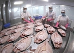 Enterprises maintain production to ensureexport growth despite pandemic