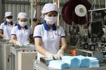 Viet Nam exports over 15 million medical masks in August