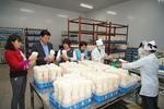 Ha Noi improves farm produce processing capacity