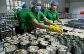 Viet Nam's exports to the US expected to rise sharply