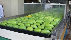 VN targets vegetable, fruit export value at $3b