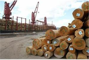 Lack of timber threatens wood industry