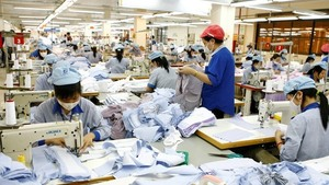 Garment 10 aims 6% rise in revenue in 2017
