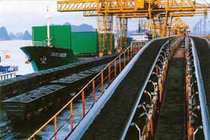 VN mining investors seek long-term returns