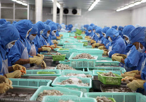 Shrimp export target ambitious, but achievable