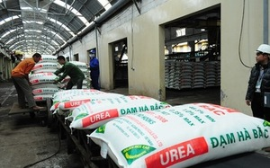 Fertiliser imports fair, says regulator