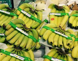 VN's vegetable, fruit export value up by 14% in Jan