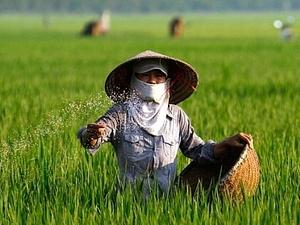 Local fertiliser industry growing