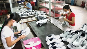 HCMC to host VN Footwear Summit