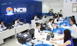 New law set to help weak banks recover: experts