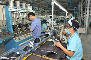 Nearly 11,000 new firms established in January