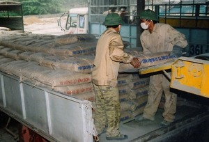 Cement stocks rise with exports