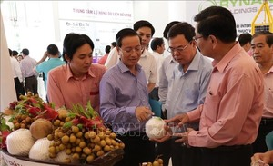 Ben Tre to hold agricultural fair in November