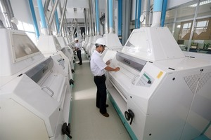 FDI policy shift aims to support domestic firms