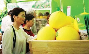 Hoang Anh Gia Lai's nine-month profit triples