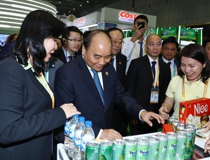 PM Phuc attends Shanghai import expo