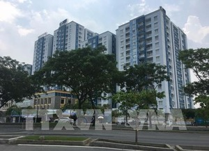 City tackles real estate issues