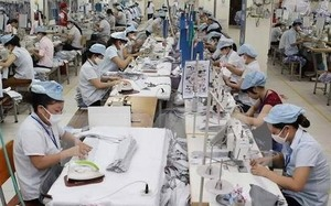 Canada will be potential market for Vietnam's export garments