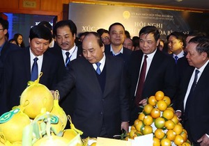Hoa Binh attracts billions in investment