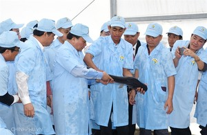 High-tech tra fish farm launched in An Giang