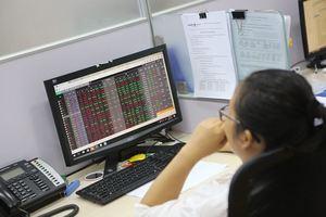 VN stocks plummet due to poor market sentiment