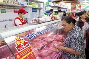 Vissan profit rises 12 per cent