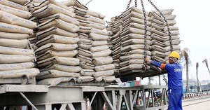 Cement consumption on the rise