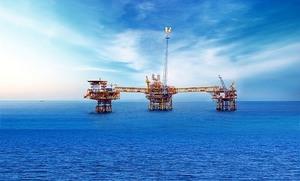 Japan bank mulls PetroVietnam plan