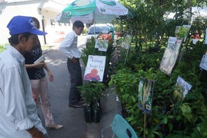 Vinh Long to host agricultural inputs fair