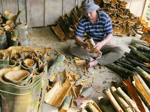 Quang Nam cinnamon seeks a spot on the world stage