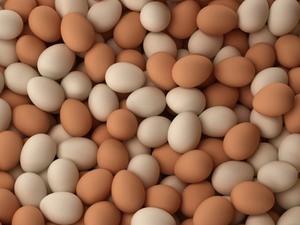 VN to cut ASEAN salt, eggs import tariffs