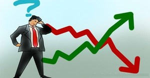 VN stocks fall amidst lack of market information