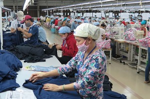 CPTPP's a must to help VN businesses grow